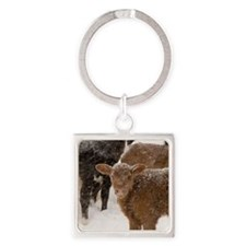 Calves in The Snow Keychains