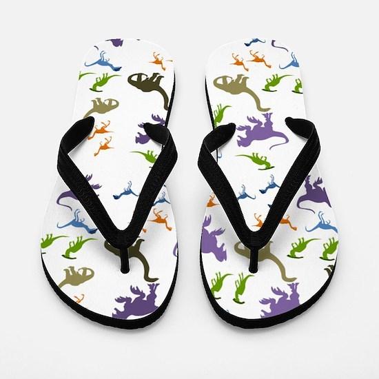 Dinosauria II Flip Flops