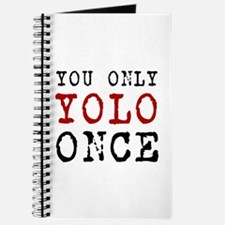 YOLO Once Journal