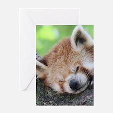 RedPanda20150810 Greeting Cards