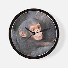 baby Chimpanzee Wall Clock