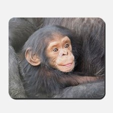 baby Chimpanzee Mousepad