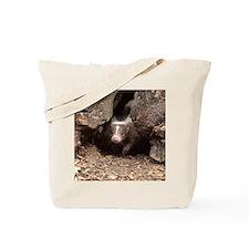 baby skunk Tote Bag