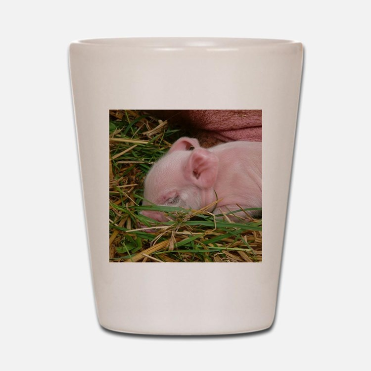 Sleeping Baby  Shot Glass