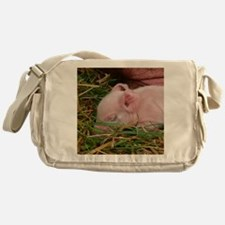 Sleeping Baby  Messenger Bag