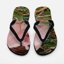 Sleeping Baby  Flip Flops