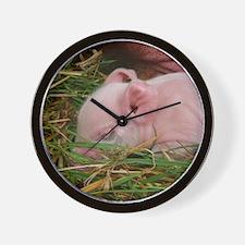 Sleeping Baby  Wall Clock