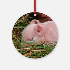 Sleeping Baby  Round Ornament