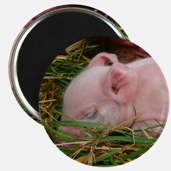 Sleeping Baby  Magnet