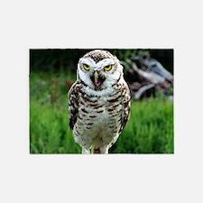 fascinating OWL 5'x7'Area Rug