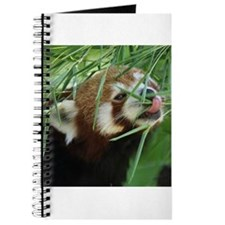 RedPanda20150812 Journal