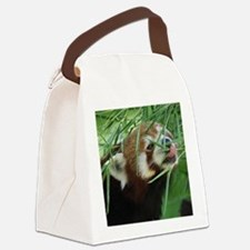 RedPanda20150812 Canvas Lunch Bag