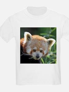 RedPanda20150816 T-Shirt