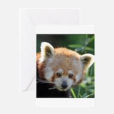 RedPanda20150816 Greeting Cards