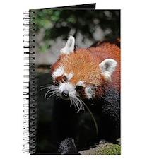 RedPanda20150817 Journal