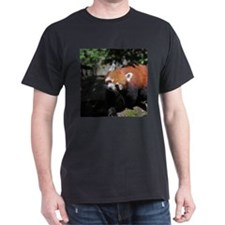 RedPanda20150817 T-Shirt