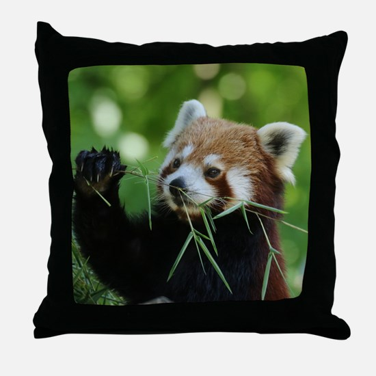 RedPanda20150818 Throw Pillow