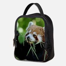 RedPanda20150818 Neoprene Lunch Bag