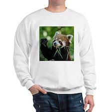 RedPanda20150818 Sweatshirt