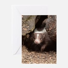 baby skunk Greeting Cards