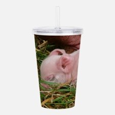 Sleeping Baby Acrylic Double-wall Tumbler