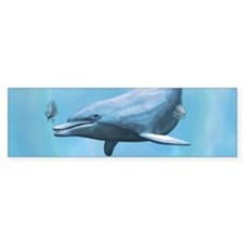 Dolphins Seascape Bumper Bumper Sticker