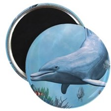 Dolphins Seascape Magnets