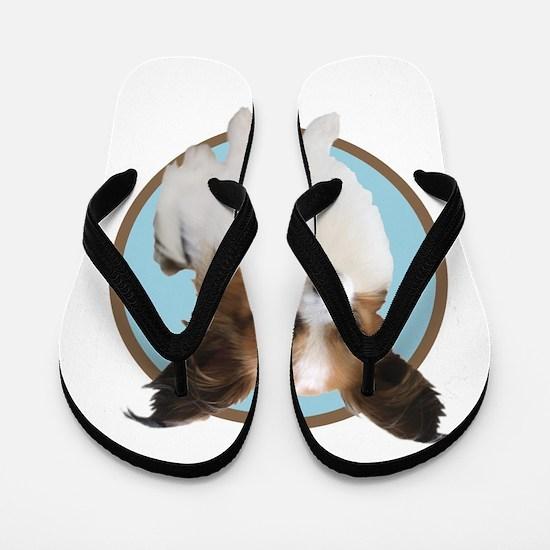 Cute Papillon Flip Flops