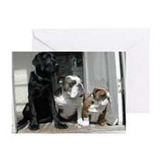 Welcome Waggin' Cards--BLANK (Pk of 10)