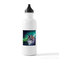 dream catcher northern Water Bottle