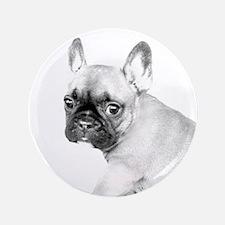 French Bulldog puppy Button