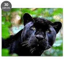 Black Panther Cat Puzzle