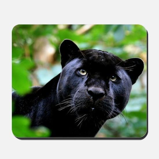 Black Panther Cat Mousepad
