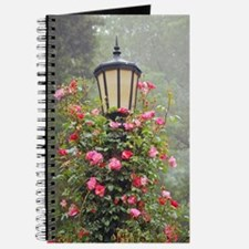 Lamppost with pink climbing roses Journal