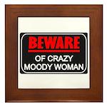 Scott Designs Beware of Crazy Women Framed Tile