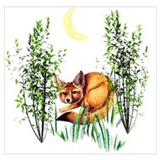 Cute Fox in Grasses Poster