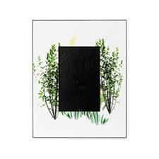 Cute Fox in Grasses Picture Frame
