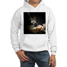 STS-104 Launch of Space Shuttle Atlantis Hoodie