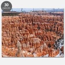 BRYCE CANYON AMP Puzzle