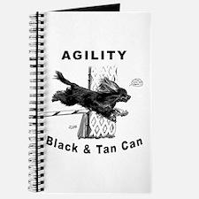 Black & Tan Cavalier Agility Journal