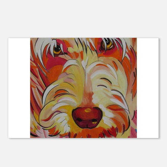 Harvey the Doodle Postcards (Package of 8)
