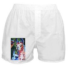 I'm in Llama Land Boxer Shorts