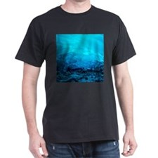 MENDENHALL ICE CAVES 3 T-Shirt