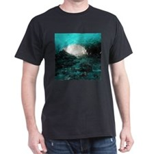 MENDENHALL ICE CAVES 2 T-Shirt