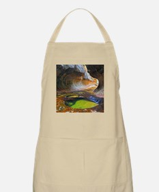 LEFT FORK CREEK 1 Apron