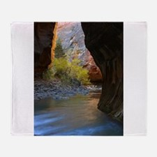 Zion Ntional Park Throw Blanket