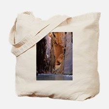 Zion Ntional Park Tote Bag