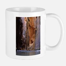 Zion Ntional Park Mugs