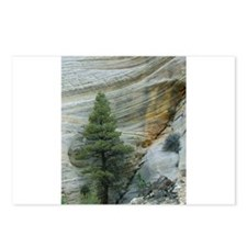 Zion Ntional Park Postcards (Package of 8)