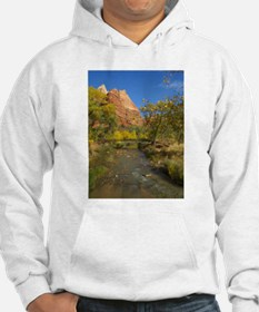 Zion Ntional Park Hoodie